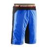 Elevenate Zephyer M's Shorts Dynamic Blue